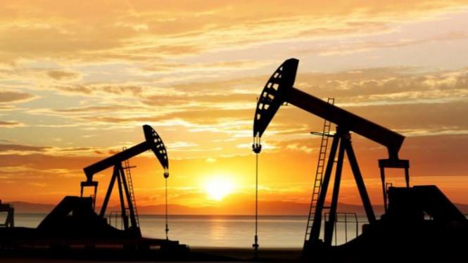 Нефть обвалилась, или Очередные глобальные проблемы на рынке углеводородов