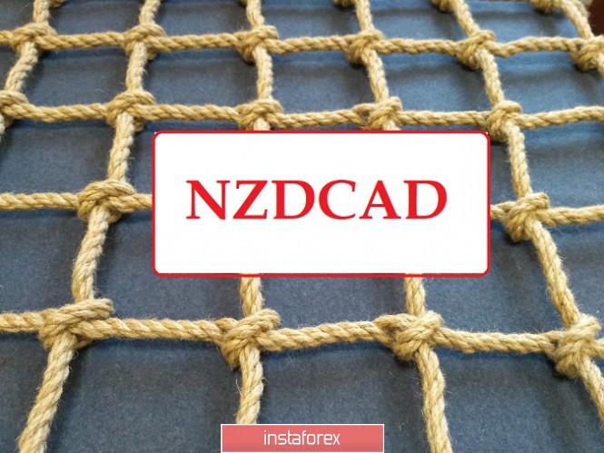 NZDCAD - ставим сеть