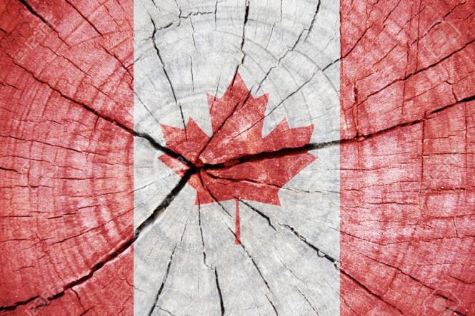 USD/CAD. Делаем ставку на канадца