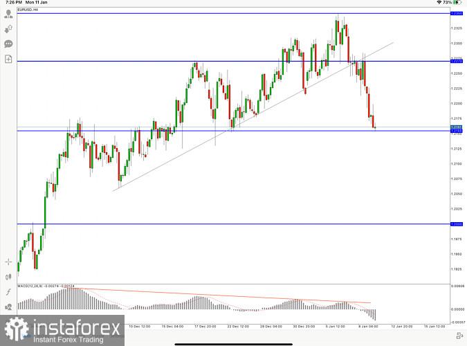 EUR/USD Hot Forecast, 11 January 2021