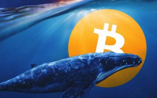 analytics5ffd90aee2187 - Монета на удачу: знакомимся с теми, кто заработал миллиарды на росте биткоина