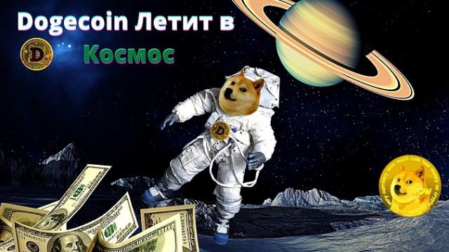 Dogecoin летиит в космос, +50% за неделю