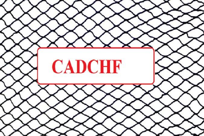 CADCHF - сеть на низком старте!