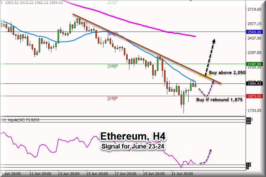 brokerul forex cu bonus de bun venit 2021 br investind bitcoin euro