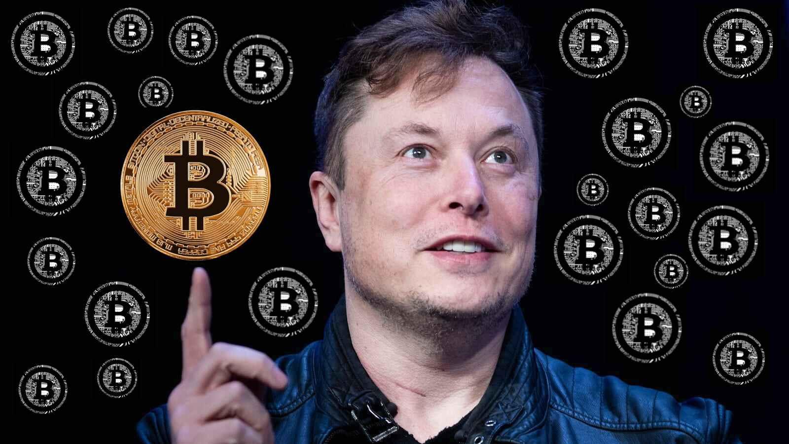 Elon Musk stirred up the crypto market again