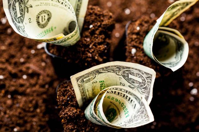 收获时刻:美元收获利益