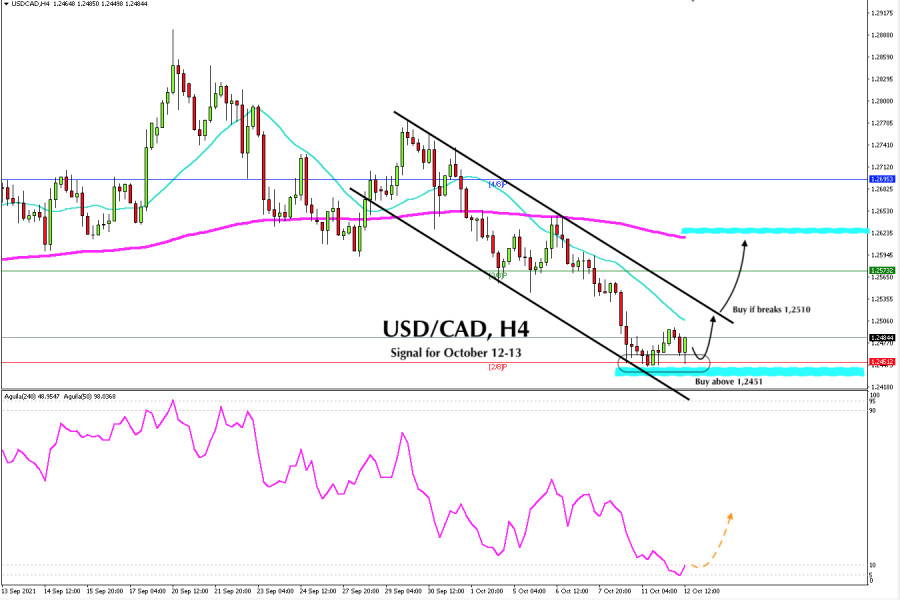 Trading signal for USD/CAD for October 12 - 13, 2021: Buy above 1.2451 (2/8)