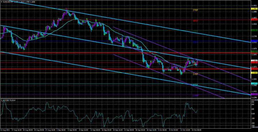 Overview of the EUR/USD pair. October 19. The euro is standing…